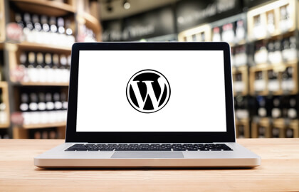 Wordpress Web Development Company